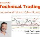 Bitcoin Market Value